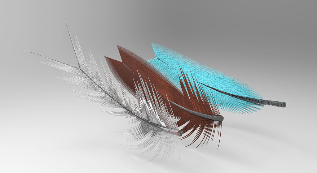 feather-Page-07-Image-0002.jpg